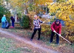 Осенней уборке города посвящается