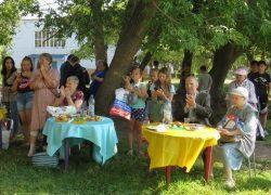 День соседей в ТОС «Никитинский»